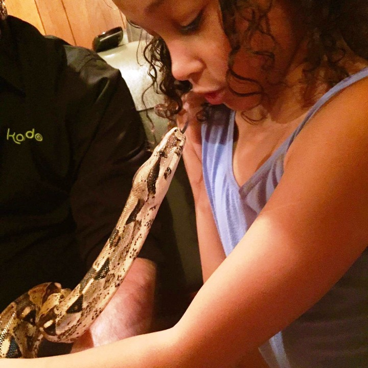 [Reptiles & Minibeasts at Your Special Events & Parties - Meet The Beasts]